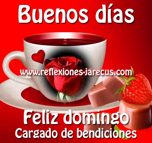 Buenos Días Feliz Domingo Imàgenes Con Frases De Feliz Domingo